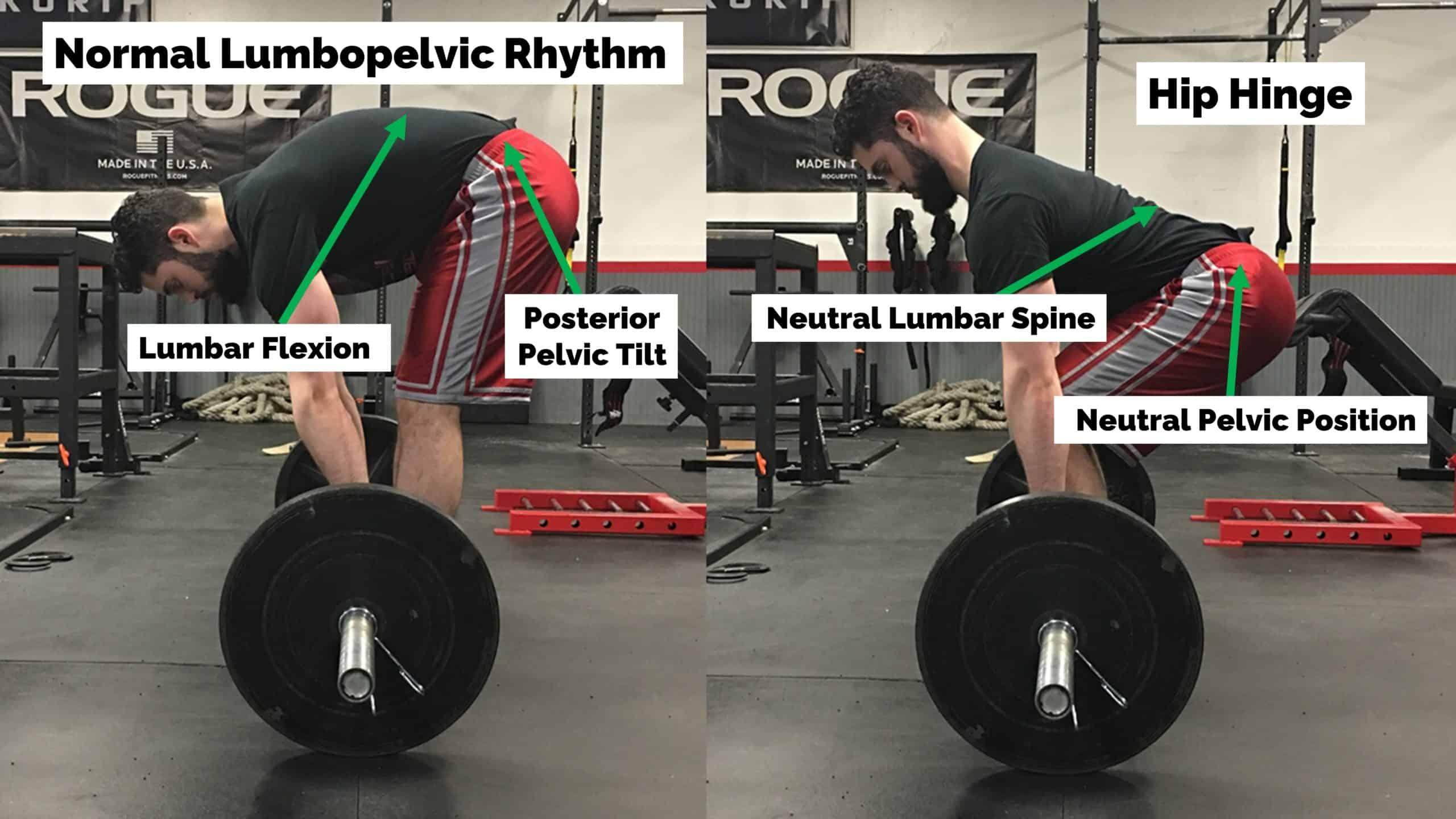 spinal flexion vs. hip hinge